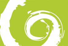 Erscheinungsbild Verein/Initiative